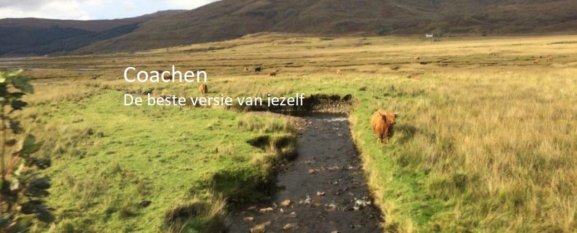 coachen_heuvels_1140x460